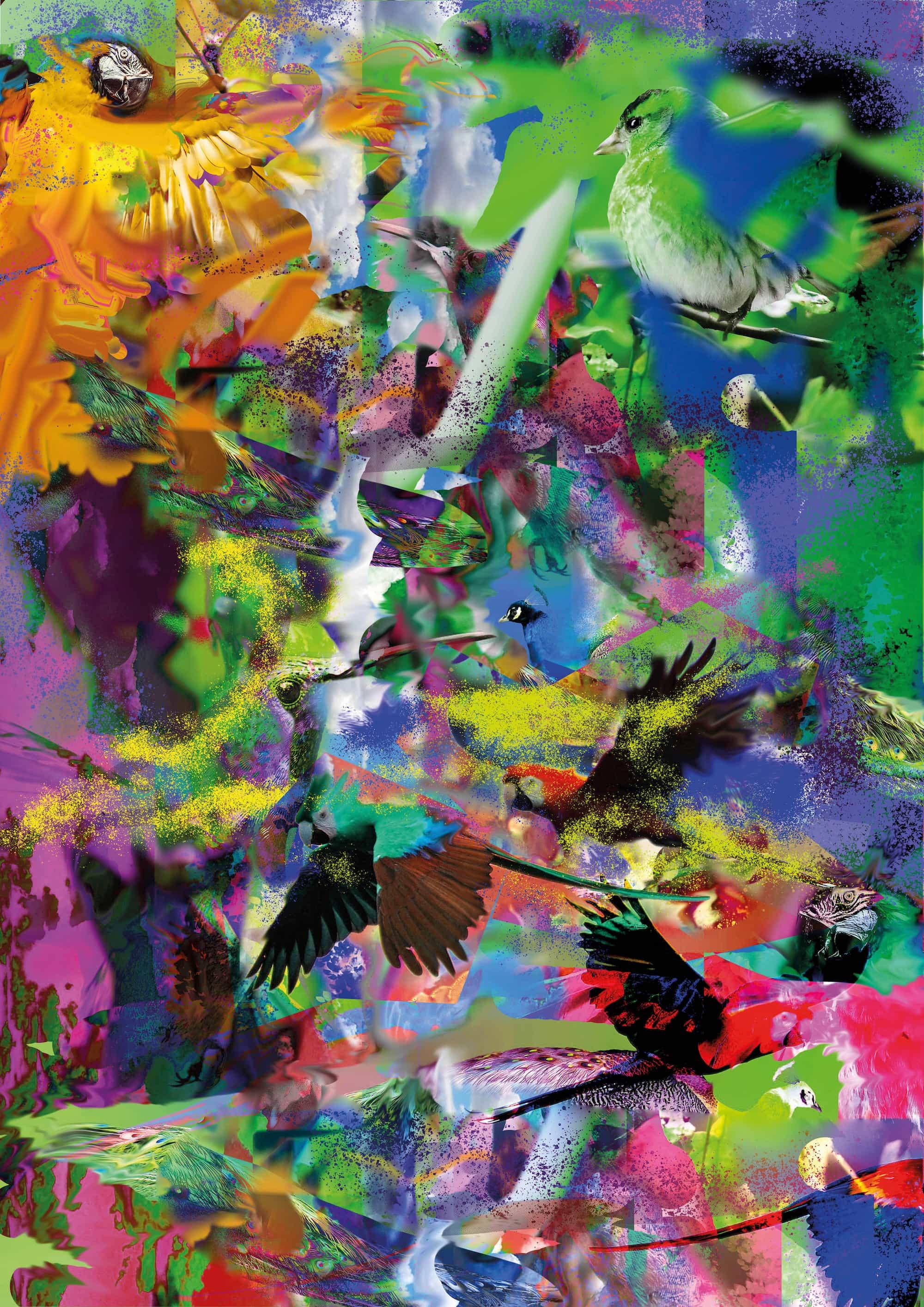 Voegel Background Bild
